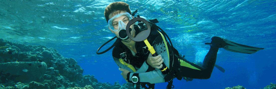 对于喜欢在陆地和水下进行搜索的专业潜水员,度假者或仅仅是探员,PulseDive二合一套装将是今年装备中的最佳选择!